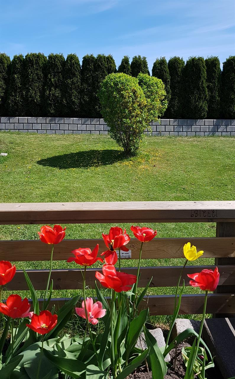 Tønsberg hage