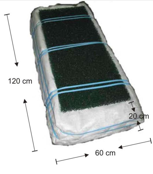 Biomoduuli