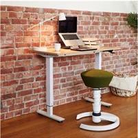 Flexidesk Höj och sänkbart skrivbord ek/vit
