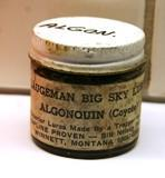 Algonquin for skadejerv