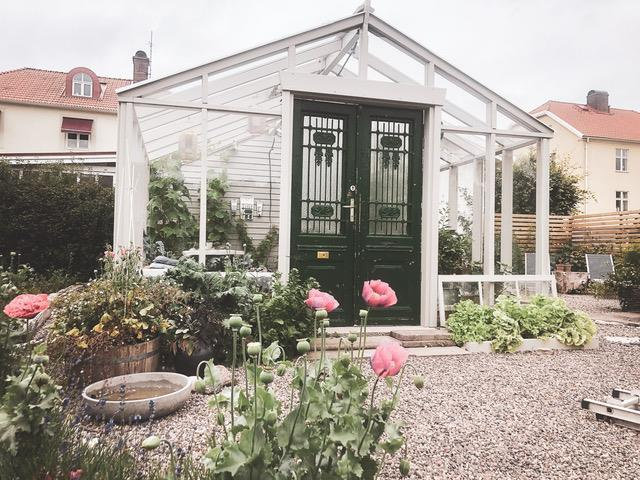11 maj: Öppen trädgård