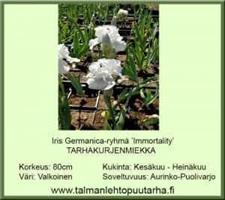 Tarhakurjenmiekka 'Immortality'