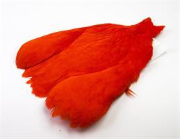 4 B´s Hen Cape - W/D Orange