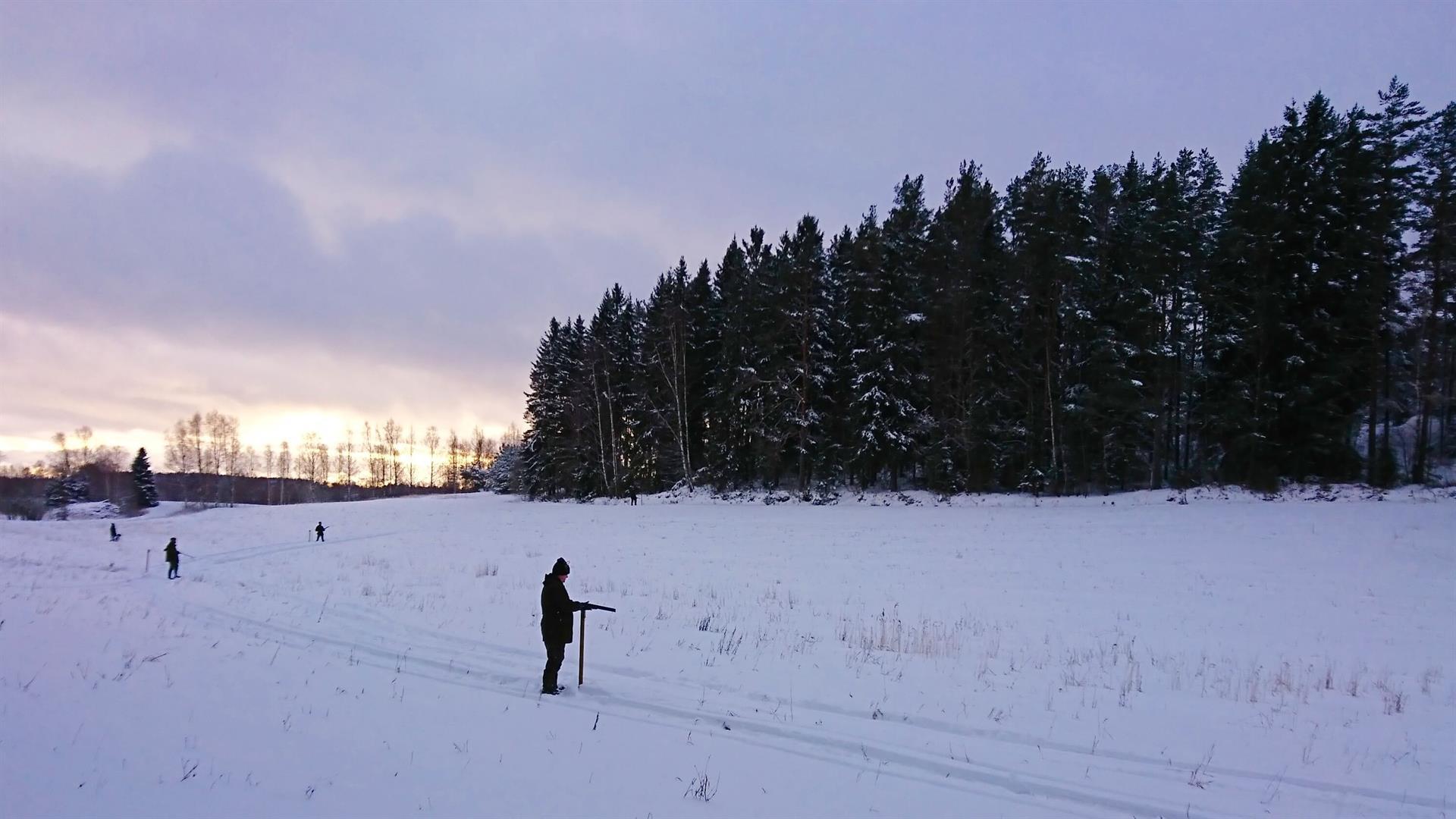 Fasaanijahtia ajojahtina Norrby Gårdissa