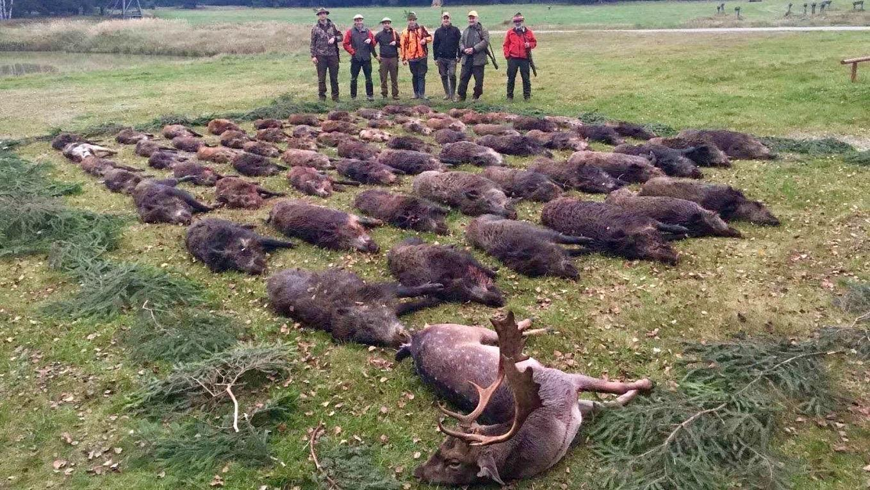 Tsekin metsästysmatkat paraati
