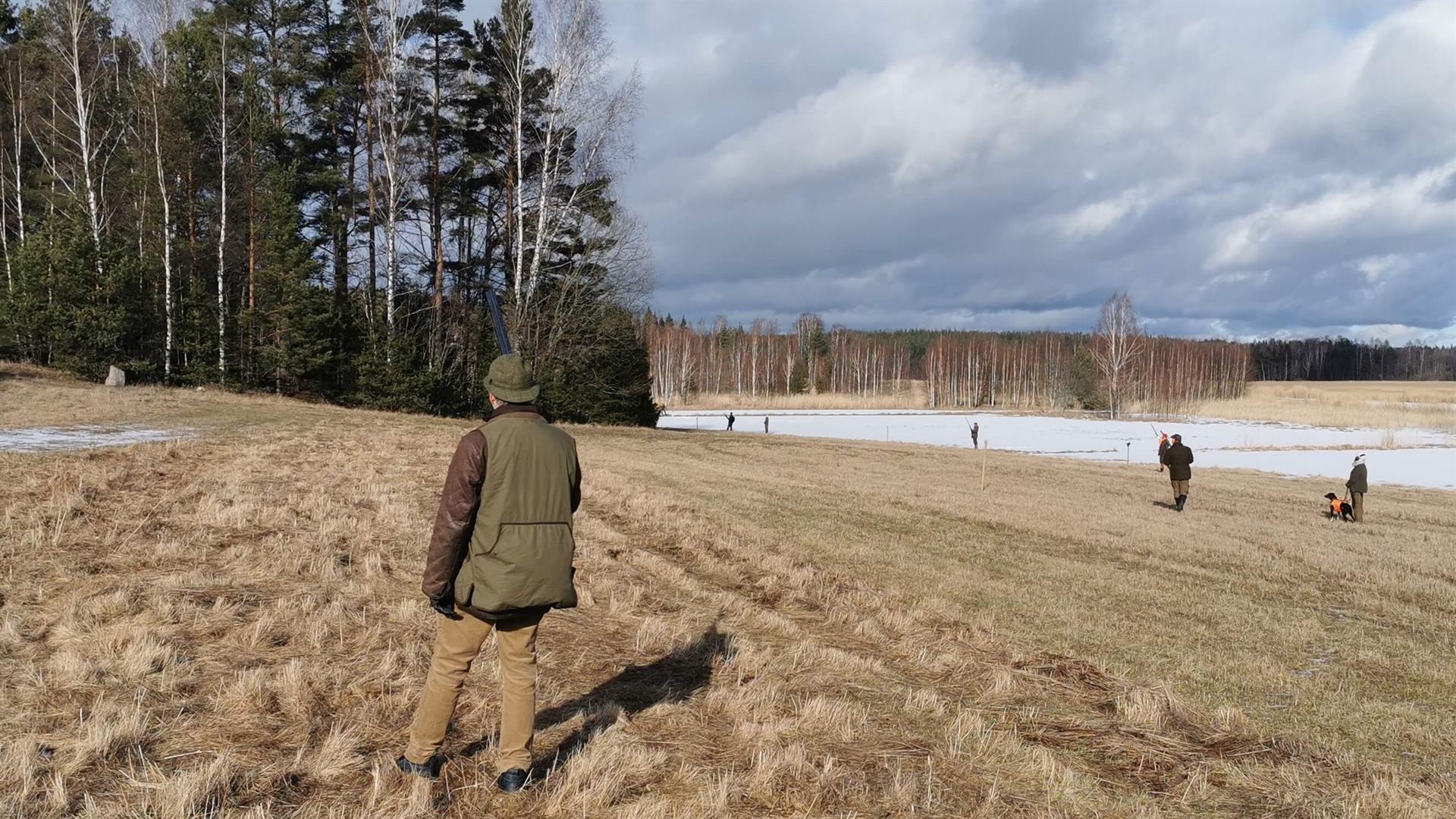 Fasaanijahtia Norrby Gårdissa