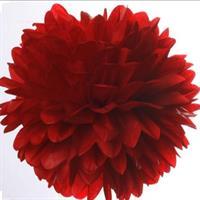 Pom Poms - Rød 20cm
