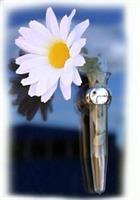 Blomma med Vas och sugpropp.